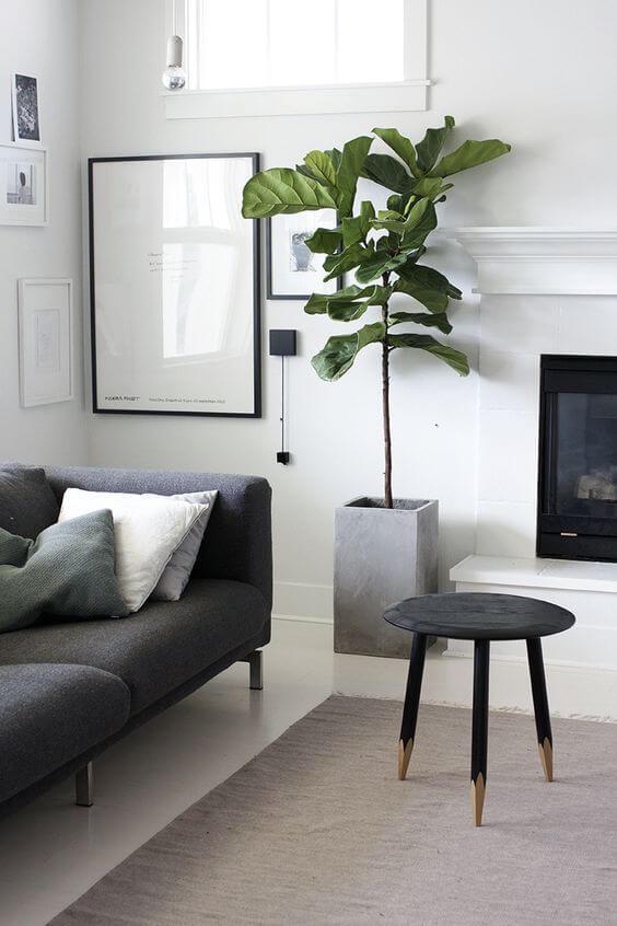 観葉植物のおしゃれな飾り方実例集テレビボードのあいた空間においておしゃれなインテリアに