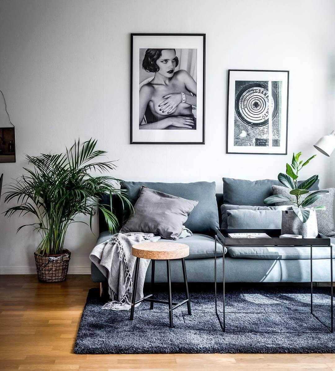 ソファーをアクセントカラーにして白い壁の前に置くことでコントラストをはっきりと出しています。観葉植物も統一していておしゃれな空間になっています。